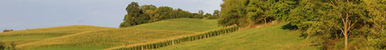 houses for sale in northumberland - Picture of the rolling hills of Northumberland County